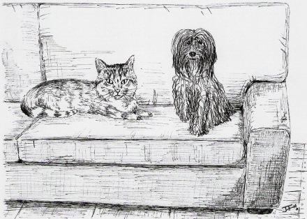 La Lasie y el gato