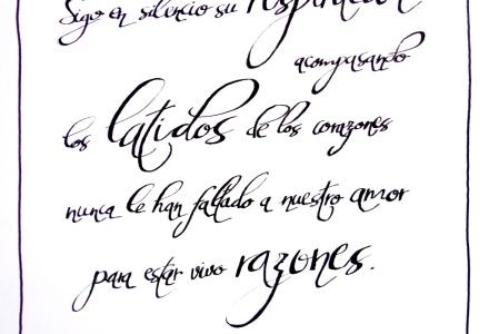 Seda y Hierro - Antonio Vega